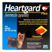 Heartgard Plus (up to 25 lbs) – 12 month supply